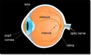 Врожденная катаракта