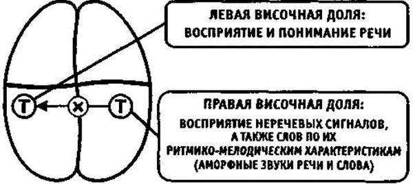 Вариант афферентной апраксии