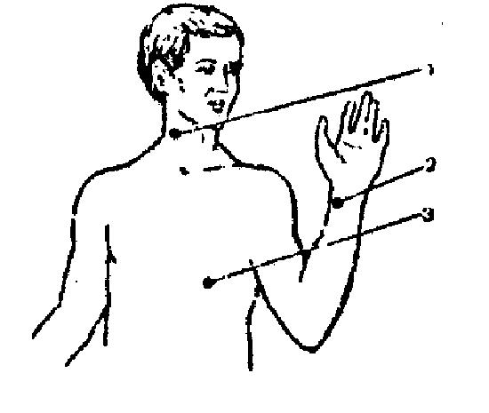 Метод аускультации