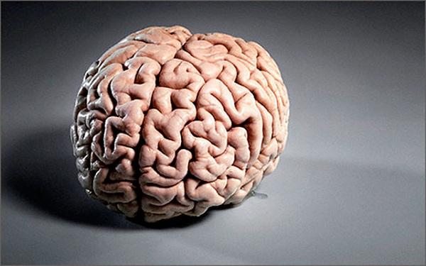 Особенности течения и терапии атрофии головного мозга