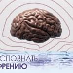 Как определить шизофрению у человека: способы и методы